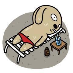 icon facebook chế chó nâu phần 28
