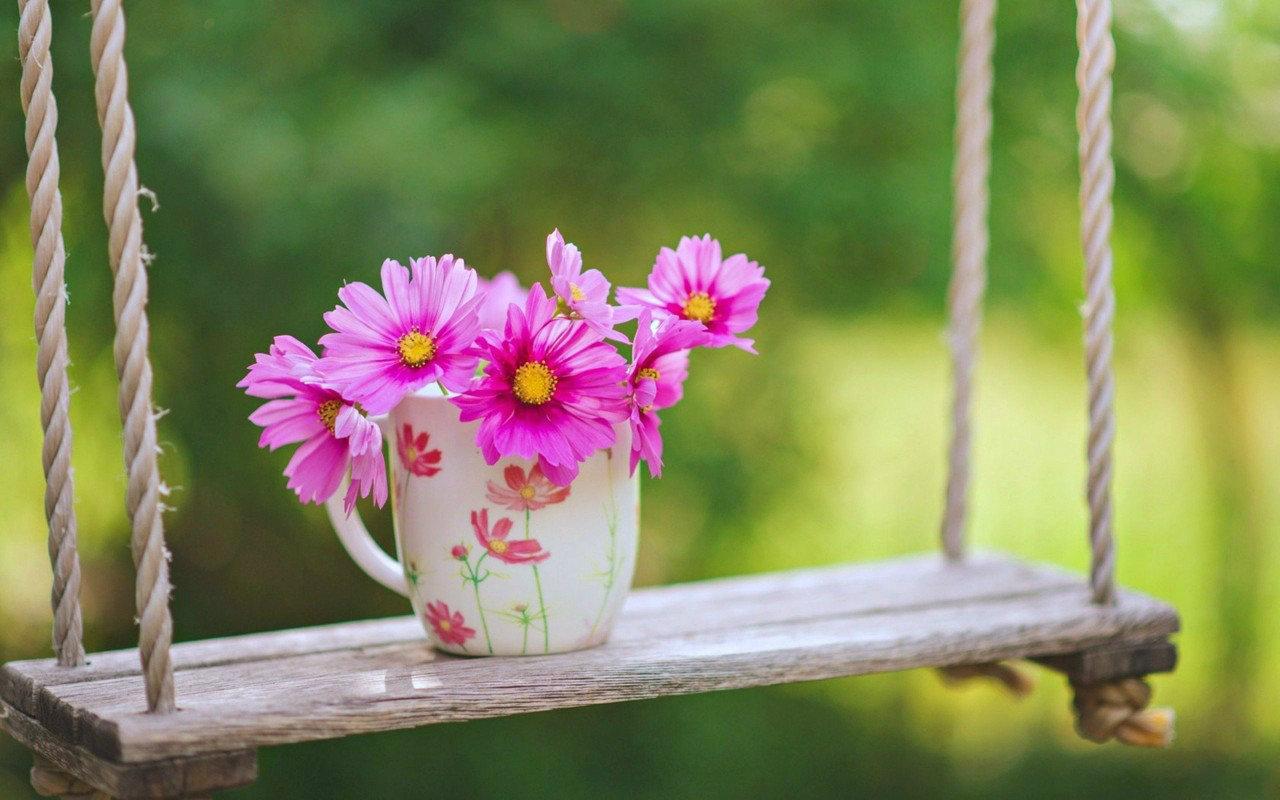Tải Hình Ảnh Hoa Đẹp Làm Hình Nền Lap Top Cực Chất