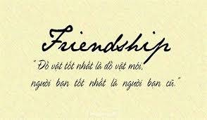 Sưu tầm những stt hay về tình bạn hay, ý nghĩa nhất