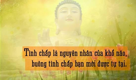 Những lời phật dạy hay nhất, tu tâm tu đức, cuộc sống bình an