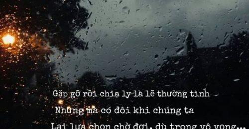 [101+] Stt tình yêu không dám nói – Yêu thầm một người không nói ra