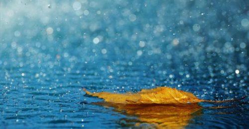 Chọn lọc [99+] Stt về mưa buồn ngắn, cô đơn đến tái tê lòng